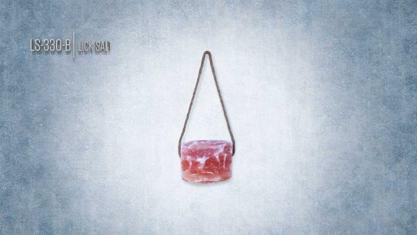 Pink Himalayan Salt Lick